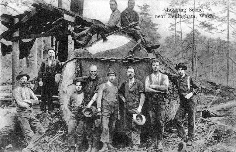 1900年頃のきこりの資料写真